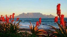 Tafelberg,  daß Wahrzeichen von Kapstadt, die schönste Stadt der Welt