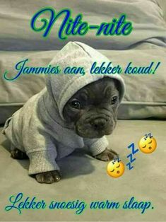 Good Night Blessings, Good Night Wishes, Good Night Sweet Dreams, Good Night Messages, Good Night Quotes, Goeie Nag, Afrikaans Quotes, Puppy Treats, Emoticon