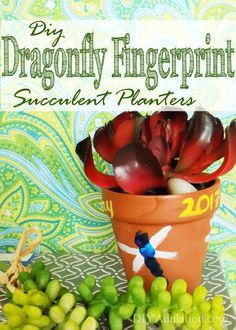 Looking for an easy Mother's Day gift idea? These DIY dragonfly fingerprint succulent planters are easy and such a blast to make! Mom and kid approved! Succulent Planter Diy, Diy Planters, Succulents, Cool Diy Projects, Craft Projects, Craft Ideas, Activity Ideas, Decor Ideas, Easy Crafts