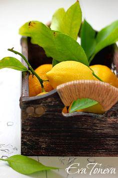 frutas pela casa...