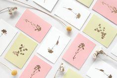 ola tree card copper.jpg