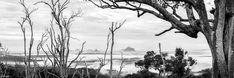 Raw Photography, Photography Gallery, Traditional Landscape, Popular Art, Sunshine Coast, Landscape Photographers, Natural Beauty, Photoshop, Canvas Prints