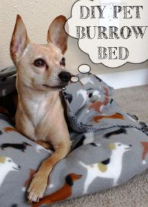 5 DIY Pet Beds For Your Favorite Pup: Just like your real kids, your fur babies deserve cool, comfortable places to lay their heads. pet projects pet projects dog pet projects to sell pet projects awesome ideas pet gate pet stairs projects for dogs Photo Animaliere, Diy Dog Bed, Homemade Dog Bed, Pet Beds Diy, Dog Clothes Patterns, Animal Projects, Dog Sweaters, Pet Clothes, Dog Clothing