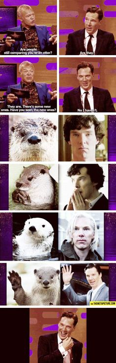 IDK, it might be just me but Ben most resembles an otter when he portrays Sherlock. His Khan looks more like a fox. Everyday Ben doesn't seem all that otterly. Maybe it's just really Sherlock who is the otter and not Ben. Am I wrong?