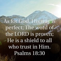 Psalms As for God, His way is perfect; The word of the LORD is proven; He is a shield to all who trust in Him. Biblical Verses, Prayer Scriptures, Scripture Verses, Bible Verses Quotes Inspirational, Faith Quotes, Bible Quotes, Bible Words, Bible Knowledge, Favorite Bible Verses