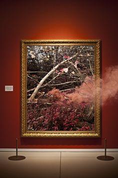 museum, red, frame, smoke, Altered States | iGNANT.de