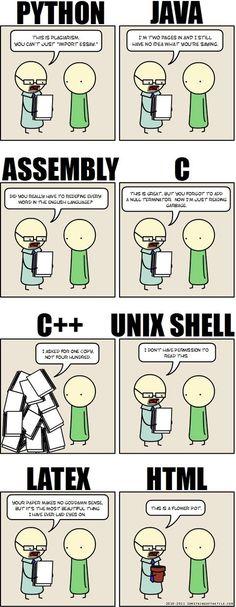 Programming languages. Alle program talen op een grappige manier verwoord en hoe het afgekeurd word door een leraar. vond het daarom wel toepasselijk!