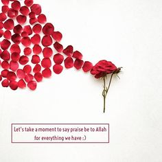 """the most important words you'll ever need is """"Alhamdulillah"""""""