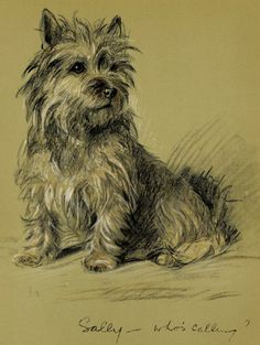 Vintage Dog Print Cairn Terrier by Lucy by AntiquePrintBoutique, $39.00