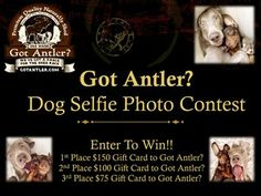 Snap A Photo Of Your Dogs Best Selfie!