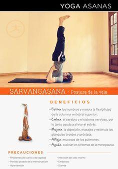 Beneficios de la práctica de Yoga · Sarvangasana | Postura de la Vela por Diego Cano