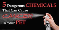 The International Agency for Research on Cancer has concluded that five organophosphate herbicides and pesticides can cause cancer to humans and animals. http://healthypets.mercola.com/sites/healthypets/archive/2015/07/16/5-pesticides-herbicides-causing-cancer.aspx