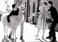 Mario Testino I like this photo because that llama is very out of place in the city.