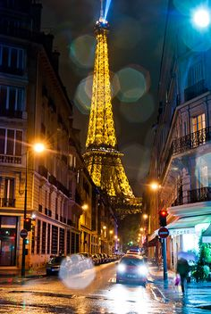 November Rain - View on the Eiffel Tower through Rue de Monttessuy, Paris by Lennert van den Boom, via Flickr