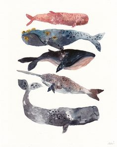 Five Whales Stacked - Archival Print - Illustration - Watercolor Art And Illustration, Fuchs Illustration, Illustrations, Art Paintings, Watercolor Paintings, Painting Art, Whale Painting, Watercolor Whale, Salt Watercolor
