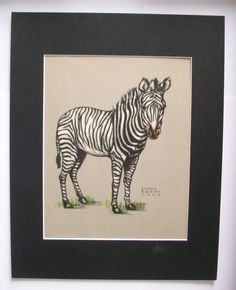 Zebra Print Gladys Emerson Cook Wild Animal Colored Bookplate 1943 11x14 Matted by VintageVaultPrints on Etsy