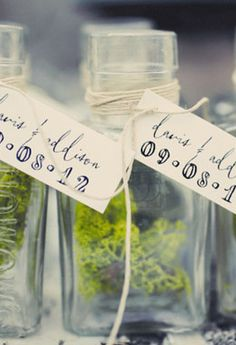 Small, decorative jars of moss as table decor, escort / place cards, and/or favors. photo: Gideon Photo St. George, Utah