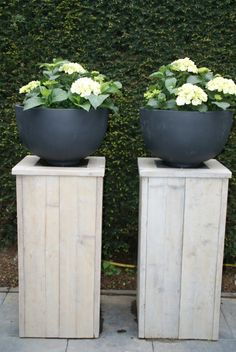 Bring Contrast Into Your Garden Design - Gardening Jardin Decor, Plantation, Garden Planters, Tall Planters, Garden Styles, Dream Garden, Garden Inspiration, Garden Furniture, Container Gardening