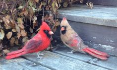 Made to Order Needle Felted Cardinal Bird Pair by PeepsyWeepsy