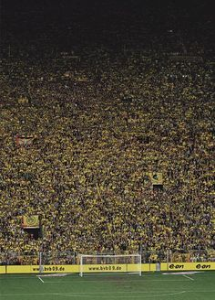 Andreas Gursky                                                                                                                                                                                 Plus