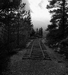 Providing perfect lines for a great picture, railroad tracks are superb photography subjects. Here are 14 wonderful photos that prove that. Abandoned Train, Abandoned Places, Austin Texas, Old Steam Train, Ferrat, Train Engines, Winding Road, Wonderful Picture, Train Tracks