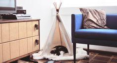 Como fazer uma cabaninha de índio americano ou teepee para gatos e cachorros.