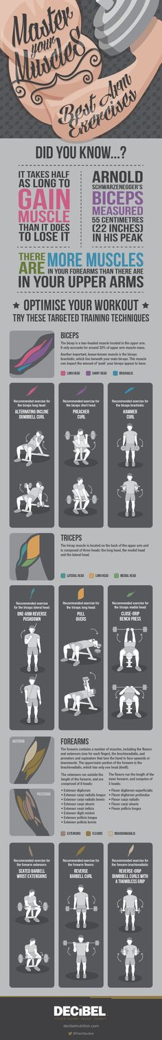 Learn how to work your arms, whether you're looking to get huge guns or simply get stronger up top. | 16 Super-Helpful Charts That Teach You How To Actually Work Out