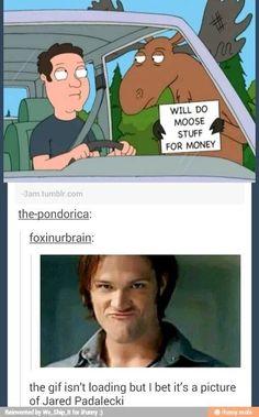 Moose. Jared Padalecki. Sam Winchester. Will do Moose stuff for money. Supernatural. Tumblr.