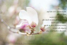 #poesie #gedanken #weisheit
