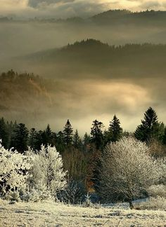 Beskid Sadecki Region in Poland, morning fog ...