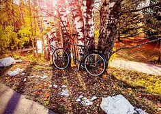 Bicycle Helsinki