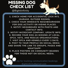 Missing Dog Information – 8ight Author and Animal Communicator Socializing Dogs, Outside Room, Dog Information, Weather Day, Purebred Dogs, Dog Activities, Hiding Places, Dog Runs, Dog Travel