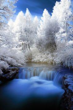 Kerosine Creek hotwater stream, Rotorua, North Island, New Zealand