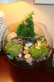 Pink and Green Mama: Indoor Garden: Making Terrariums With Kids - sunny windowsill