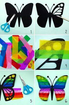 Schmetterling in Transparent