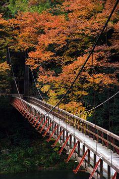 Gifu, Japan