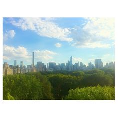 #NewYorkCity #Skyline from the #rooftop of the #MetMuseum. #summertime #bluesky #cloud #sunny #trees #centralpark #skyscrapers #architecture #nyc #metropolitanmuseum #I❤️NY #紐約 #夏天 #大都會博物館  #madewithfaded