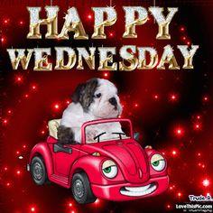 Cute Happy Wednesday Gif