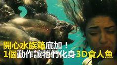 正宗開心水族箱底加! 1個動作讓牠們化身3D食人魚 #惡魔在身編:嚇歪寶寶惹!! #請分享 給愛玩養魚遊戲的朋友~~ 畫面來源: Live Leak/ YouTube : MrAgreene