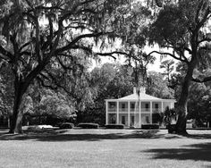 Fine Art Photography-Southern Comfort - Architectural, Southern,Black and White Photography - Landscape & Gardens