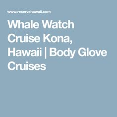 Whale Watch Cruise Kona, Hawaii | Body Glove Cruises