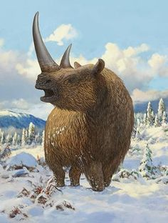 A Woolly Rhinoceros Standing by Sergey Krasovskiy A woolly rhinoceros (Coelodonta antiquitatis) standing in the snow during the Pleistocene epoch. Prehistoric Wildlife, Prehistoric World, Prehistoric Creatures, Wildlife Art, Vida Animal, Beast Creature, Jurassic World Dinosaurs, Dinosaur Art, Extinct Animals