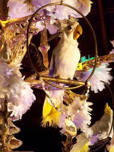 Neatorama Facts: The Enchanted Tiki Room