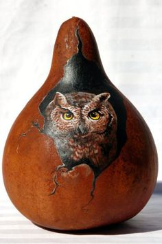 Hand Painted Screech Owl Gourd by JypsyWings. Great idea for painting. Decorative Gourds, Hand Painted Gourds, Halloween Gourds, Gourds Birdhouse, Birdhouses, Screech Owl, Gourd Art, Owl Art, Pyrography