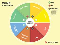 Newsletter: This Week on Wine Folly