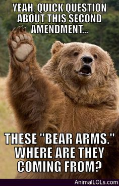 Bear Arms Questions - http://www.animallols.com/random-animals/bear-arms-questions/