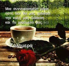 Καλημέρα Beautiful Pink Roses, Good Morning, About Me Blog, Rain, Paracord, Pictures, Buen Dia, Rain Fall, Bonjour