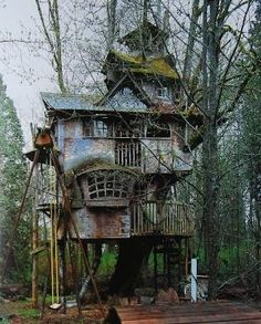 Abandoned Tree House by kristie