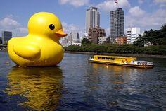 Rubber duck in Osaka