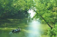 Creek to the Ohio